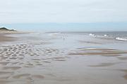 Meadow Beach, Cap Cod, Massachusetts, USA