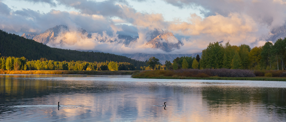 Sunrise over oxbow bend with some grebes floating in the foreground. Grand Teton National Park, USA