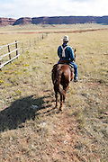 WY02333-00...WYOMING - Mike Buckich ridding out on the Willow Creek Ranch. MR# B18