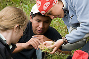 Theresa Meacham , William Nauray and Rosa Maria Roman-Cuesta with an orchid discovered near the Interoceanic Highway