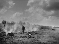 Haitian sugar cane workers burn off underbrush, which also chases vermin and snakes, before cutting the sugar cane, near Barahona, Dominican Republic.