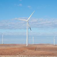 wind farm in fall