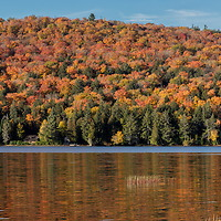 http://Duncan.co/rock-lake-panorama-01