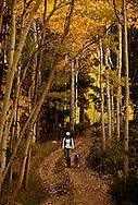 Woman walking on mountain trail with Australian Shepherd dog in fall, Colorado, MODEL RELEASED