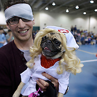 Pug nurse to the rescue..The 6th Annual Milwaukee Pug Fest was held Sunday May 16. 2010 at the Milwaukee Sports Complex in Franklin, Wisconsin.