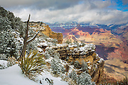 Winter on the South Rim of Grand Canyon National Park in Arizona.