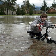 Chris Conley, 12, of reacts to the cold water while trying to ride his bike through a flooded portion of River View Park next to the Snoqualmie River in Snoqualmie on Tuesday, January 18, 2005.  Record amounts of rainfall pushed the Snoqualmie River to flood stage.  Joshua Trujillo / Seattle Post-Intelligencer