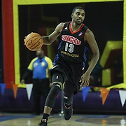 Springfield Armor Guard Bruce Massey (13) dribbles the ball up court in the course of a NBA D-league regular season basketball game between the Delaware 87ers (76ers) and the Springfield Armor (Nets) Saturday, Dec. 28, 2013 at The Bob Carpenter Sports Convocation Center, Newark, DE.<br />