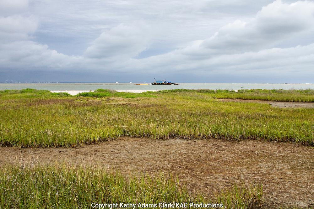 Marsh grass and mudflat on Bolivar Peninsula shoreline, Texas.