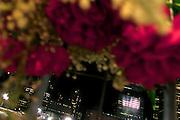 Flowers at Ground Zero. World Trade Center, New York, New York. September 11, 2005.<br /><br />Copyright, Matt Lutton, 2005.