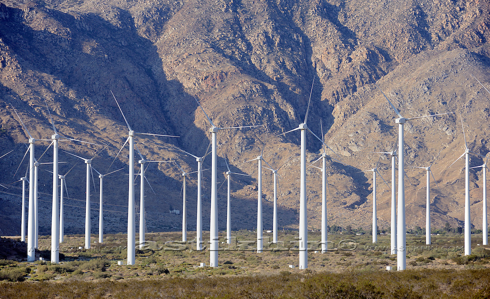 Wind Turbine Farm in California