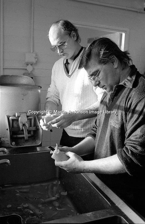 Striking miners peeling potatoes, Ellington Miners Support Group, Ashington. 06/12/1984.