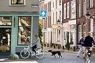 In Utrecht fietst een meisje door de stad met een hand aan de lijn, terwijl ze met haar telefoon bezig is.<br /> <br /> In Utrecht a girl cycles on a bike with a dog on a leash, while she is looking at her phone.