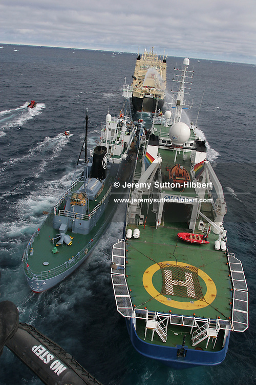 the Japanese whaling fleet catcher ship  Kyo Maru No.1 collides with Greenpeace ship MY Esperanza, as Greenpeace inflatables try to hinder the transfer of a dead minke whale from the catcher ship to the Nisshin Maru factory ship. Southern Ocean.  21.12.2005