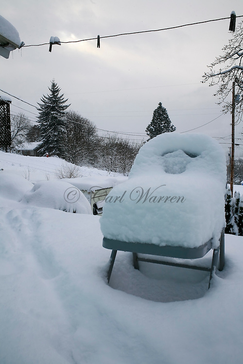 winter images from the pacific northwest