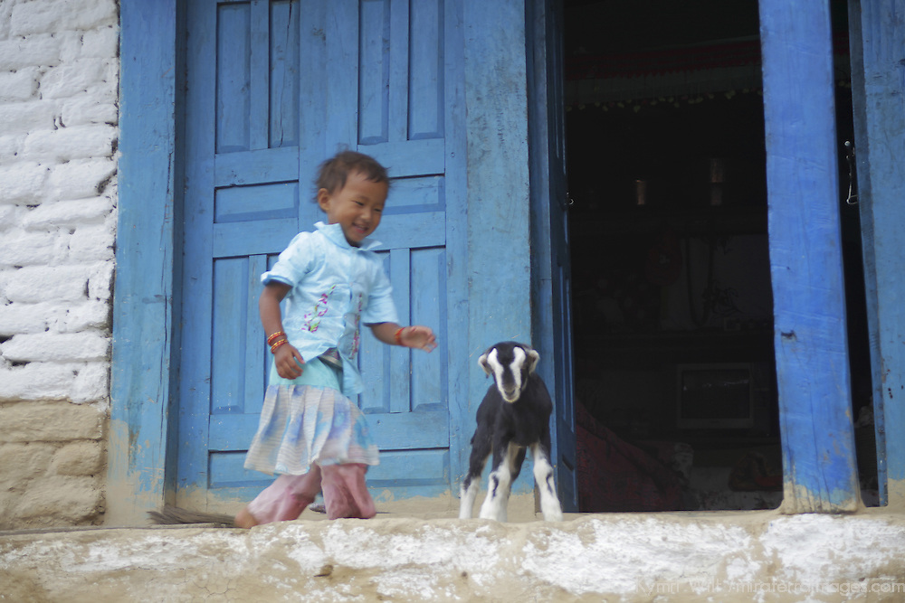 Asia, Nepal, Annapurnas. Young girl and goat at home in the Annapurnas.