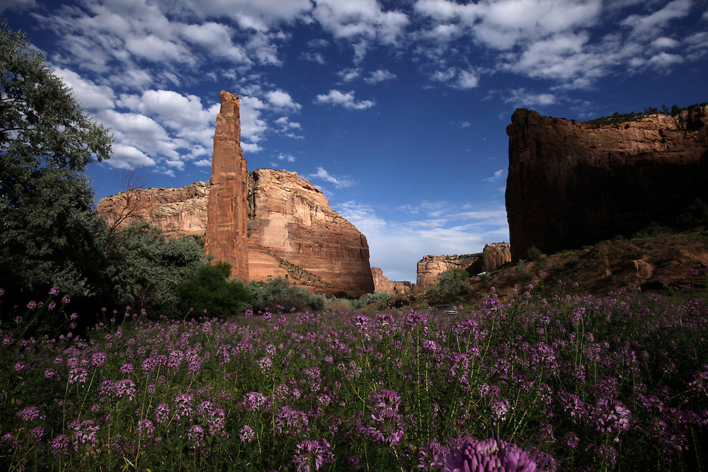 pvc081713g/8-17-13/asec.  Spider Rock is seen in the background at left in Canyon de Chelly National Monument Thursday August 15, 2013.  (Pat Vasquez-Cunningham/Journal)