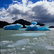 Lago Gray and  ice floes, once part of Gray Glacier