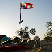 "Camp Hope, eine Zeltstadt fuer Obdachlose in Ontario, Kalifornien.Die umgekehrte amerikanische Flagge bedeutet ""Notlage""..Fotos © Stefan Falke..Camp Hope, a  tent city for the homeless in Ontario, California.The upside down flag is hissed as a sign of distress"