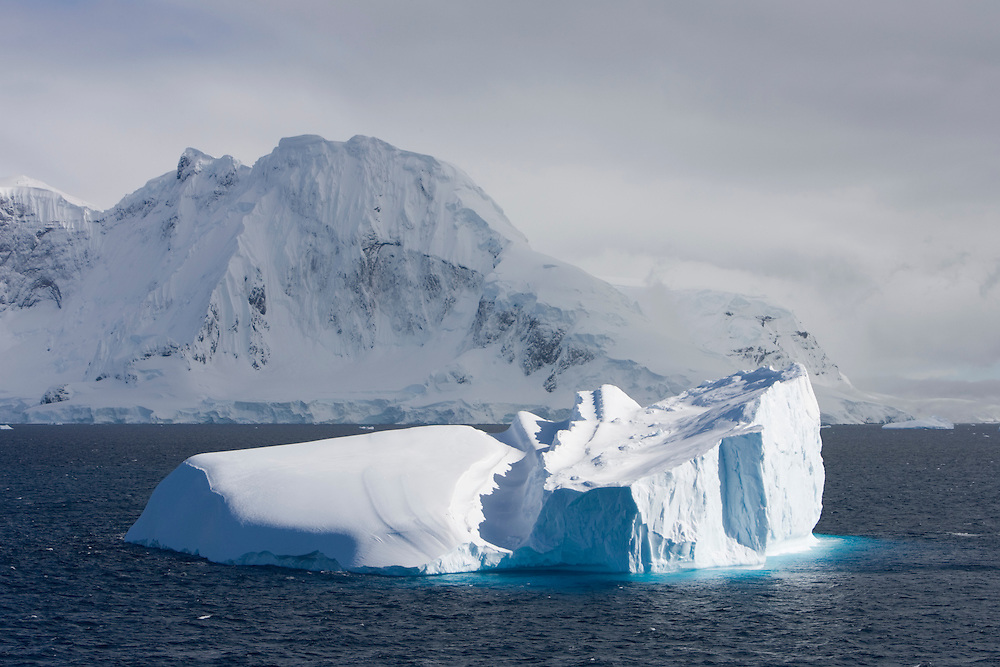 Antarctica, Lemaire Channel, Icebergs float near glacier covered islands on early summer morning