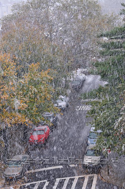First snow in Brooklyn, NYC, 2011