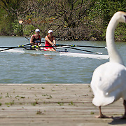 Canadian Secondary School Rowing Championships 2013