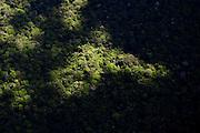 Sunlight shines through the clouds on virgin rainforest near Isanga, Democratic Republic of Congo.
