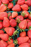 Strawberries, Old Monterey Farmers Market, California