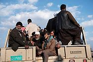 Iraq, Mosul: Iraqis displaced from Mosul load onto trucks for transportation to IDP camps. Alessio Romenzi