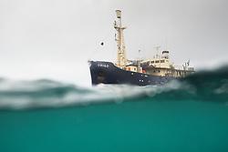 M/S Origo expedition ship in Svalbard, Norway