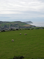 Farming landscape at Isle of Man