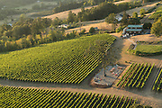 Lachini vineyard, Chehalem Mountain AVA, Willamette Valley, Oregon