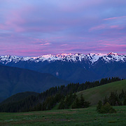 The sunrise turns the clouds above the Olympic Mountains pastel pink and blue in this view from Hurricane Ridge in Olympic National Park, Washington.