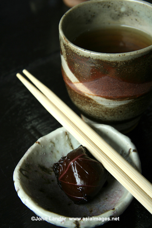Japanese Pottery and Plum