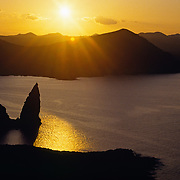ECUADOR: Galapagos Islands, Highlands