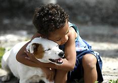 DEC 11 2014 Hero dog Pitucha
