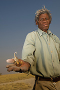 Kalahari Bushman named Cobra (Soaque Tribe) with Scorpion<br /> Makgadikgadi Pans, Kalahari Desert<br /> Northeast BOTSWANA<br /> HABITAT &amp; RANGE: