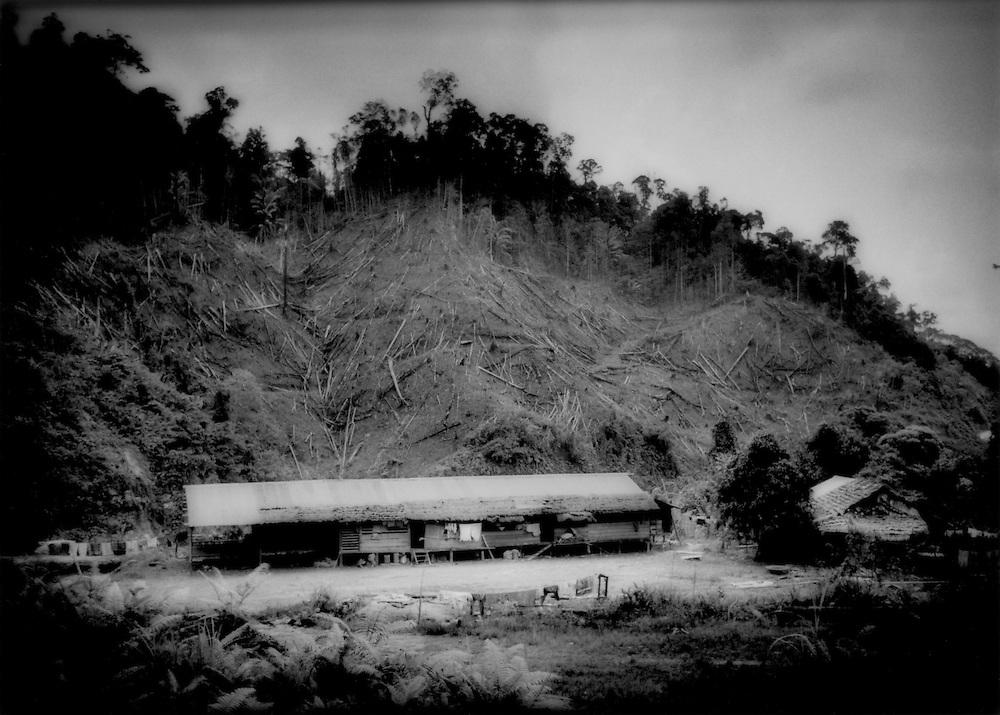 Environmentally sound though not beautiful swidden fields, Interior Sarawak, Malaysian Borneo.