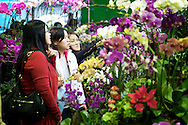 Women shop for orchids at the Jianguo Flower Market (??????) in Taipei, Taiwan.