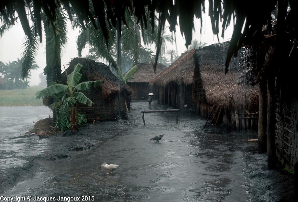 Africa, Libinza tribe, Ngiri River islands, Democratic Republic of the Congo. Heavy rain over village.
