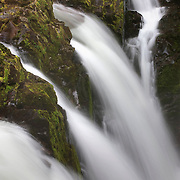 The Sol Duc river splits into four waterfalls as it dives into a rocky gorge in Olympic National Park, Washington.