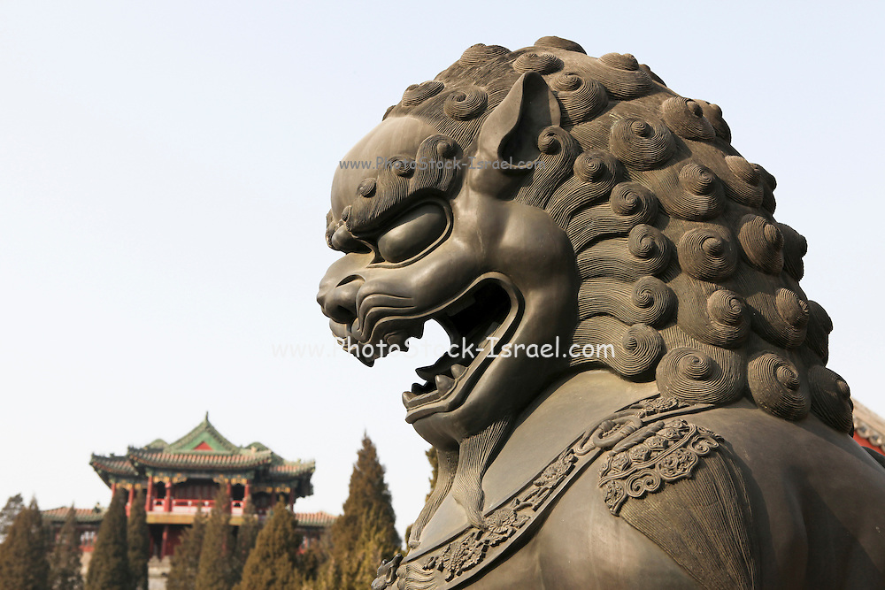 China, Beijing, Statue of a bronze lion The Imperial Palace in the Forbidden City