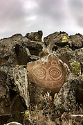 The famous ancient indian rock art known as &amp;quot;Tsagaglalal&amp;quot; or &amp;quot;She Who Watches&amp;quot; located in the Columbia Hills State Park in Washington as part of the Columbia River Gorge National Scenic Area. There are several legends of &amp;quot;Tsagaglalal&amp;quot;<br /> <br /> Quoted from Wikipedia 6/6/08 &amp;quot;There are several versions of the legend, but the one told by the Wishram people is as follows:<br /> A woman had a house where the village of Nixluidix was later built. She was chief of all who lived in the region. That was a long time before Coyote came up the river and changed things and people were not yet real people. After a time Coyote in his travels came to this place and asked the inhabitants if they were living well or ill. They sent him to their chief who lived up on the rocks, where she could look down on the village and know what was going on.<br /> Coyote climbed up to the house on the rocks and asked &amp;quot;What kind of living do you give these people? Do you treat them well or are you one of those evil women?&amp;quot; &amp;quot;I am teaching them to live well and build good houses,&amp;quot; she said.<br /> &amp;quot;Soon the world will change,&amp;quot; said Coyote, &amp;quot;and women will no longer be chiefs.&amp;quot; Then he changed her into a rock with the command, &amp;quot;You shall stay here and watch over the people who live here.&amp;quot;<br /> All the people know that Tsagaglalae sees all things, for whenever they are looking at her those large eyes are watching them.&amp;quot;