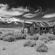 Abandoned Homestead - Mono Basin Eastern Sierras, CA - Infrared Black & White
