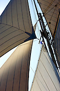 "29SEP09 Les Voiles De St Tropez 2009..The sails of the 1892 Charles E Nicholson 24m build ""Marigold""."