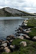 Bio16O - Sierra + White Mtn.
