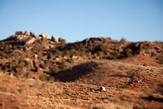 Mountain biking - Moab, UT