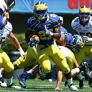 Delaware Running Back Julian Laing (27) reverses direction in the backfield in the second half of The University of Delaware Annual Spring football game Saturday May. 04, 2013 at Delaware Stadium in Newark Delaware...Delaware will open it home schedule against Jacksonville University Aug. 29, 2013 at 7:30 p.m