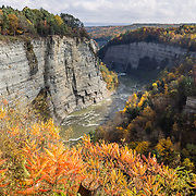 """In Letchworth State Park, renowned as the """"Grand Canyon of the East,"""" the Genesee River roars northeast through a gorge over three major waterfalls between cliffs as high as 550 feet, surrounded by diverse forests which turn bright fall colors in the last three weeks of October. The large park stretches 17 miles between Portageville and Mount Morris in the state of New York, USA. Drive or hike to many scenic viewpoints along the west side of the gorge. The best walk is along Gorge Trail #1 above Portage Canyon from Lower Genesee Falls (70 ft high), to Inspiration Point, to Middle Genesee Falls (tallest, 107 ft), to Upper Genesee Falls (70 ft high). High above Upper Falls is the railroad trestle of Portageville Bridge, built in 1875, to be replaced 2015-2016. Geologic history: in the Devonian Period (360 to 420 million years ago), sediments from the ancestral Appalachian mountains eroded into an ancient inland sea and became the bedrock (mostly shales with some layers of limestone and sandstone plus marine fossils) now exposed in the gorge. Genesee River Gorge is very young, as it was cut after the last continental glacier diverted the river only 10,000 years ago. The native Seneca people were largely forced out after the American Revolutionary War, as they had been allies of the defeated British. Letchworth's huge campground has 270 generously-spaced electric sites."""