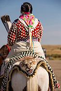Crow Fair Parade, Woman, Cougar, (Puma concolor), Crow Indian Reservation, Montana